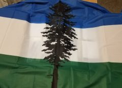 The Cascadian Flag: A Transformative Icon